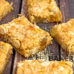 Tropical Pineapple Bars